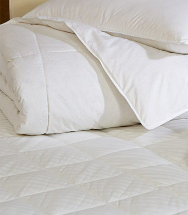Shop Signature Bedding
